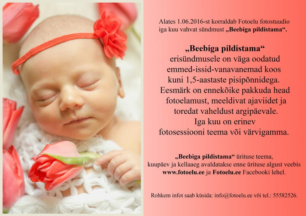 web-beebiga-pildistama